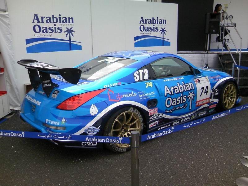 Arabian_oasis_z33